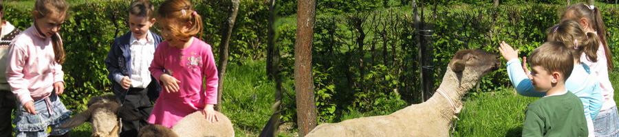 Gyöngyös-kert Óvoda